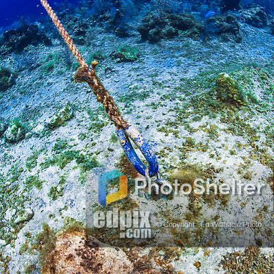 27 July 2015: A Permanent Mooring anchored in the coral sea base holds a line, marks the location, and provides a secure tie-up for dive boats at School House Reef, on the North side of Grand Cayman Island. Located in the British West Indies in the Caribbean, the Cayman Islands are renowned for excellent scuba diving, snorkeling, beaches and banking.  Mandatory Credit: Ed Wolfstein Photo *** RAW (NEF) Image File Available ***