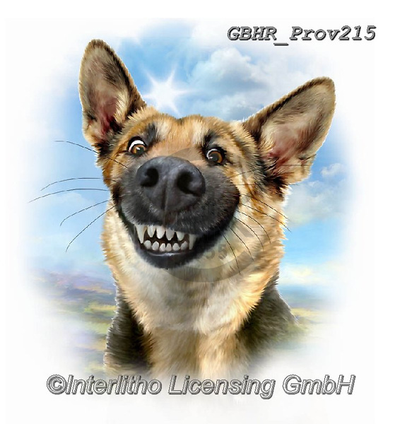Howard, REALISTIC ANIMALS, REALISTISCHE TIERE, ANIMALES REALISTICOS, paintings+++++German sheperd,GBHRPROV215,#a#, EVERYDAY ,selfies