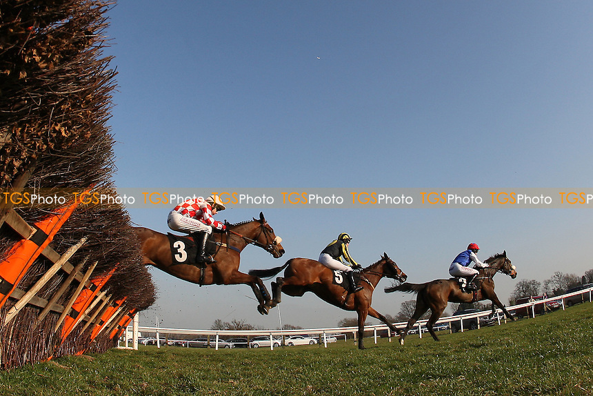 The field in jumping action during the Follow Plumpton Racecourse On Facebook Mares Handicap Hurdle - Horse Racing at Plumpton Racecourse, East Sussex - 12/03/12 - MANDATORY CREDIT: Gavin Ellis/TGSPHOTO - Self billing applies where appropriate - 0845 094 6026 - contact@tgsphoto.co.uk - NO UNPAID USE.