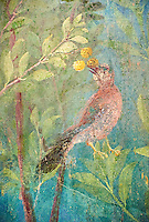 Painted Bird from the Roman fresco of a garden from Villa Livia, Rome (Early first century AD), Rome, Livia was the wife of Roman emperor Augustus.  Museo Nazionale Romano ( National Roman Museum), Rome, Italy.<br /> Trees and shrubs had symbolic importance to the Romans as can be see by the plants used in the trompe-l&rsquo;&oelig;il frescoes from the Villa Livia, Rome, which contains plants linked to the deities particularily venerated by Augustus and Livia.