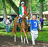 Nea with Polett Nagy aboard before The International Ladies Fegentri race at Delaware Park on 6/13/17