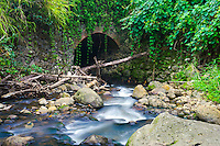 A river flows through a bridge tunnel near Hawi, Hawai'i Island.