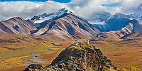 Polychrome Pass, autumn colors in the distance, flanked by the Alaska range mountains, Denali National Park, Alaska.
