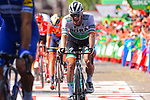 Irish Champion Sam Bennett (IRL) Bora-Hansgrohe finishes 2nd place on Stage 17 of La Vuelta 2019  running 219.6km from Aranda de Duero to Guadalajara, Spain. 11th September 2019.<br /> Picture: Dario Belingheri/BettiniPhoto | Cyclefile<br /> <br /> All photos usage must carry mandatory copyright credit (© Cyclefile | Dario Belingheri/BettiniPhoto)