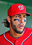 10 July 2011: Washington Nationals first baseman Michael Morse walks the dugout during a game against the Colorado Rockies at Nationals Park in Washington, District of Columbia. The Nationals shut out the visiting Rockies 2-0 salvaging the last game their 3-game series at home prior to the All-Star break. Mandatory Credit: Ed Wolfstein Photo