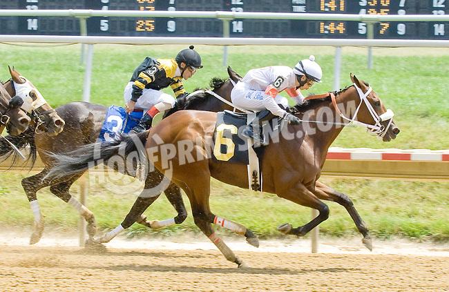 Cape Girl winning at Delaware Park on 7/5/12