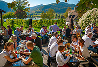 Oesterreich, Niederoesterreich, Kulturlandschaft Wachau - UNESCO Weltkultur- und Naturerbe, Duernstein: Heurigenlokal Alter Klosterkeller - Terrasse | Austria, Lower Austria, Wachau Cultural Landscape - UNESCO World's Cultural and Natural Heritage, Duernstein: wine tavern Alter Klosterkeller - terrace