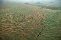 Mima Mounds; aerial view; CA, Merced County