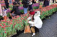 Nederland Amsterdam - 2019. Nationale Tulpendag. Op de Dam in Amsterdam wordt de officiële aftrap van het tulpenseizoen gegeven. De opening van het tulpenseizoen wordt georganiseerd door Nederlandse tulpenkwekers. In een speciaal aangelegde pluktuin op de Dam kan iedereen gratis tulpen plukken. Foto Berlinda van Dam / Hollandse Hoogte