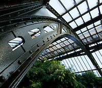 Plant History Glasshouse (formerly Australian Glasshouse), 1830s, Rohault de Fleury, Jardin des Plantes, Museum National d'Histoire Naturelle, Paris, France. View from below of the glass and metal roof structure and the luxuriant Tropical vegetation in the glasshouse lit by the afternoon sun.