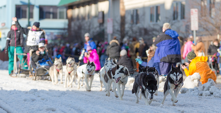 Lisbet Norris' dog team takes off down 4th Avenue at the ceremenial start of the 43rd Annual Iditarod in Anchorage, Alaska. The 1000 mile dog sled race usually restarts in Willow, Alaska, and finishes in Nome. Poor snowfall, however, forced the restart north to Fairbanks.