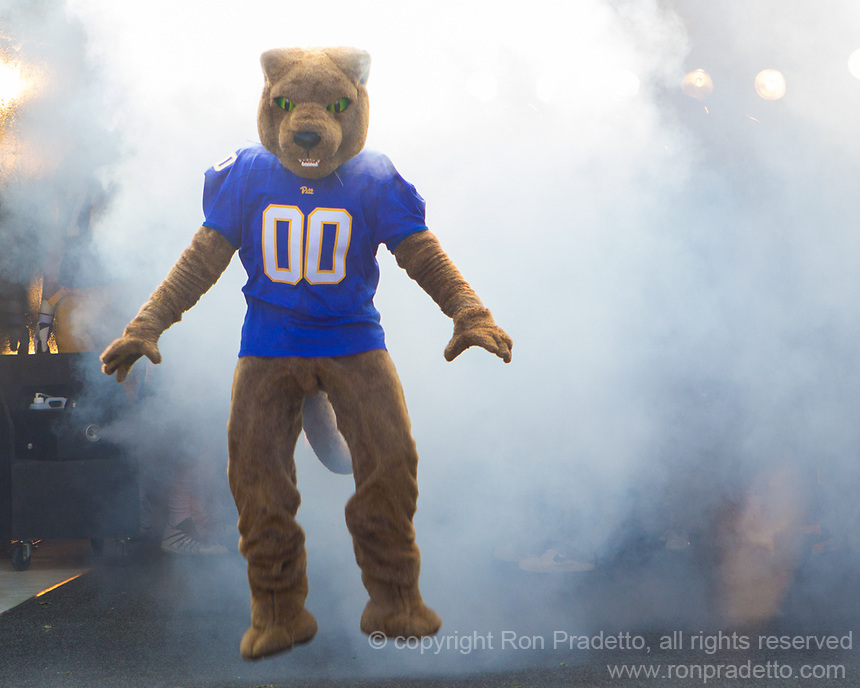 The Pitt Panther mascot ROC takes the field. The North Carolina Wolfpack defeated the Pitt Panthers 35-17 at Heinz Field, Pittsburgh, PA on October 14, 2017.