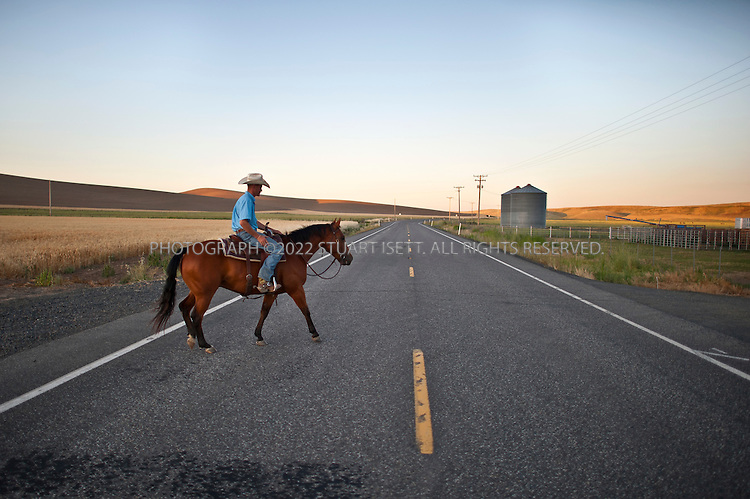 8/3/2011--La Crosse, Dusty, WA, USA<br /> <br /> Horses at the Alkali Creek Ranch in Eastern Washington State. The ranch trains cutting horses for rodeos.<br /> <br /> <br /> &copy;2011 Stuart Isett. All rights reserved. at the