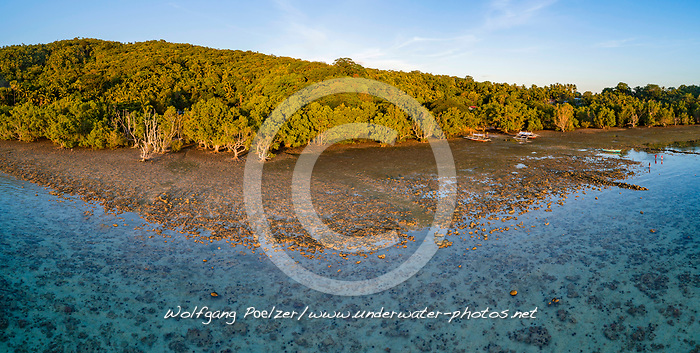 Luftaufnahme von Mangrovenwald, Insel Romblon, Philippinen, Philippinensee, Philippinisches Meer, Pazifik Pazifischer Ocean / Aerial View of mangrove forest, Island Romblon, Philippines, Philippine Sea, Pacific, Pacific Ocean