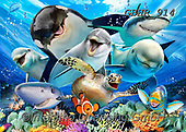Howard, SELFIES, paintings+++++,GBHR914,#Selfies#, EVERYDAY ,underwater,maritime,dolphins ,sharks,maritime