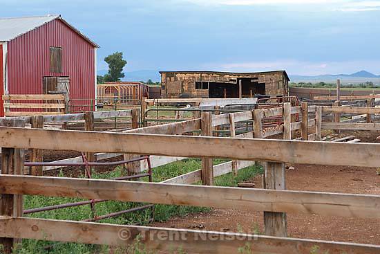 Westcliffe - FLDS. Sunday, July 27, 2008. barns
