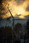 Pix: Shaun Flannery/shaunflanneryphotography.com...COPYRIGHT PICTURE&gt;&gt;SHAUN FLANNERY&gt;01302-570814&gt;&gt;07778315553&gt;&gt;.<br />