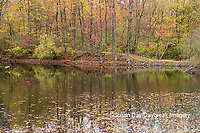 63895-15612 Fall Color Pyramid Lake State Recreation Area Perry Co. IL