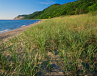 Sleeping Bear Dunes National Lakeshore, MI<br /> Beach grasses under forested dunes with Empire Bluffs and Lake Michigan