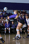 Haley Barnes (20) of the High Point Panthers digs the ball against the Liberty Flames at the Millis Athletic Center on September 23, 2016 in High Point, North Carolina.  The Panthers defeated the Flames 3-1.   (Brian Westerholt/Sports On Film)