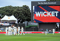 Kyle Jamieson celebrates dismissing India's Prithvi Shaw during the International Test Cricket match between the New Zealand Black Caps and India at the Basin Reserve in Wellington, New Zealand on Friday, 21 February 2020. Photo: Dave Lintott / lintottphoto.co.nz