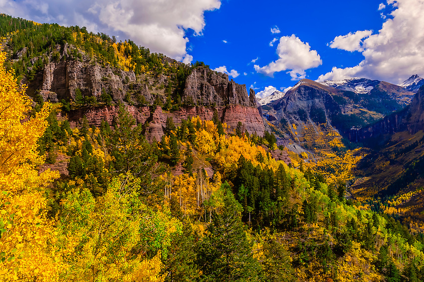 Fall color, 13,114 foot (3997 meter) Imogene Pass, San Juan Mountains, southwest Colorado USA.