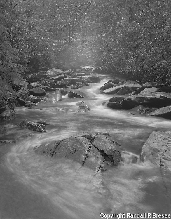 &quot;Creek, Rocks and Mist&quot; Great Smoky Mountains National Park<br /> <br /> This black and white photo shows a common scene in the Great Smoky Mountains National Park with water cascading downhill around rocks to produce mist. Camera tilt movements were needed to ensure that sharp focus extended through the entire image area. My choices were to tilt the lens forward or tilt the film backward. I tilted the film back since, unlike lens tilt, image perspective was changed at the same time focus was changed. This was advantageous for the photograph shown here because it caused the large rock in the foreground to loom larger while focus was improved throughout the whole scene.
