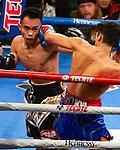 Ryan Garcia Victorvile CA v Romero Duno Las Angeles, CA Vacant WBC Silver & NABO Lightweight Title