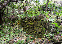 Rock wall at Ili'ili'opae Heiau, Moloka'i