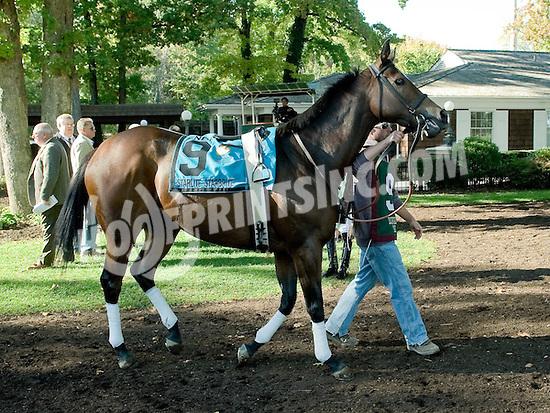 Starlite Starbrite before The Endine Stakes at Delaware Park on 10/13/12