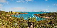 Panoramic Photo of Sailing Boats on Waiheke Island, Auckland, North Island, New Zealand. Waiheke Island is a stunning island just 40 minutes ferry ride from the Auckland ferry terminal. It is an extremely popular island and holiday destination with both local New Zealanders and foreign tourists alike thanks to its 15 vineyards, beautiful beaches and picturesque scenery and walks. The Fullers Waiheke Island Explorer Tour is a great way to see a large part of the island, and at c.$40 (just over £20) including the ferry, its a great, affordable option.