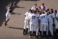 Virginia catcher Franco Valdes and the Cavaliers huddle before a 2009 College World Series game against Arkansas at Rosenblatt Stadium. (Photo by Michelle Bishop)  ..