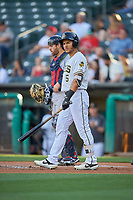 Michael Hermosillo (5) of the Salt Lake Bees bats against the Round Rock Express at Smith's Ballpark on June 10, 2019 in Salt Lake City, Utah. The Bees defeated the Express 9-7. (Stephen Smith/Four Seam Images)