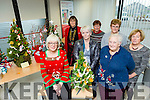 Kerry ICA Winter Federation Meeting at Aras an Phobail, Dean's Lane, Tralee on Sunday. Pictured members who entered the Christmas tree decor event, front l-r Caroline O'Donoghue, Debbie Quirke, Ann Kavanagh Back l-r  Liz O'Leary, President KICA, Kathleen Simmons, Ann O'Sullivan, Mary Holly