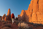 A young man hikes through the Devils Garden area of Arches National Park,  Utah.
