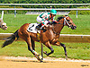 Mason County winning at Delaware Park on 6/28/16