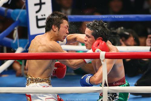 (L-R) Akira Yaegashi (JPN),  Edgar Sosa (MEX), DECEMBER 6, 2013 - Boxing : WBC Fly weight title bout between Akira Yaegashi - Edgar Sosa at Ryogoku Kokugikan in Tokyo, Japan.  (Photo by AFLO SPORT) [1156]