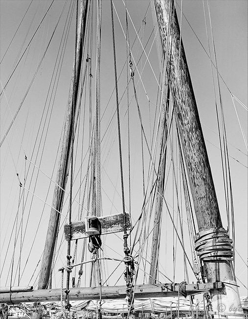"""Rigging"" has been a popular choice from the Fine Art, Limited Edition ""Skipjack Sunday"" collection. Once upon a time there were thousands of these creating a forest of masts in Skipjack harbors. Also available in sepia."