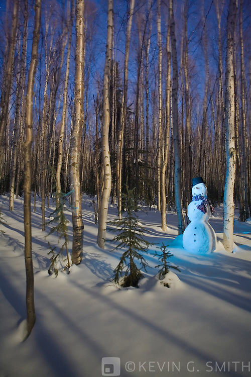Snowman with top hat standing in a moon lit birch forest. Glowing light, twilight, Fairbanks Alaska.