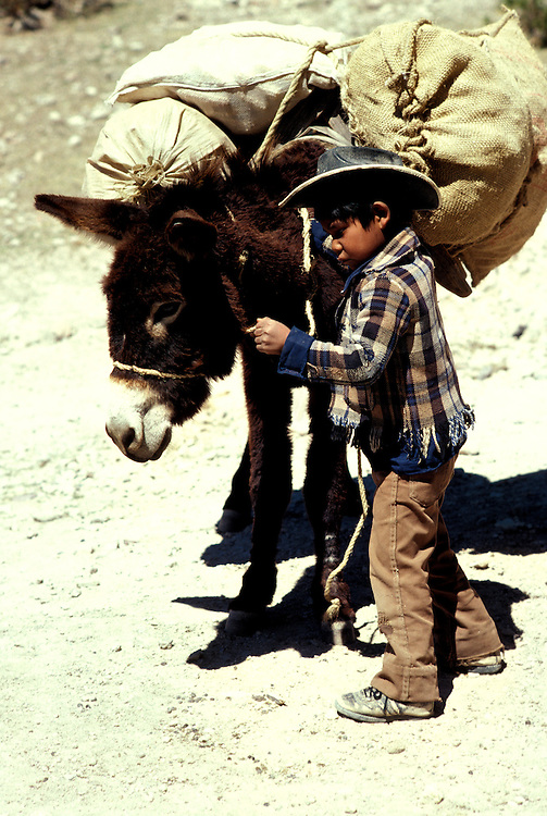 Mexico: Loading burro with corn near Creel,  Tarahumara tribe, Copper Canyon, Barranca del Cobre, Sierra Madre Occidental  .Photo copyright Lee Foster, www.fostertravel.com..Photo #: mxtara104, 510/549-2202, lee@fostertravel.com