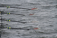Crew: 40  Radley College  Event: J16 CHAMP eights<br /> <br /> Schools' Head of the River 2017<br /> <br /> To purchase this photo, or to see pricing information for Prints and Downloads, click the blue 'Add to Cart' button at the top-right of the page.