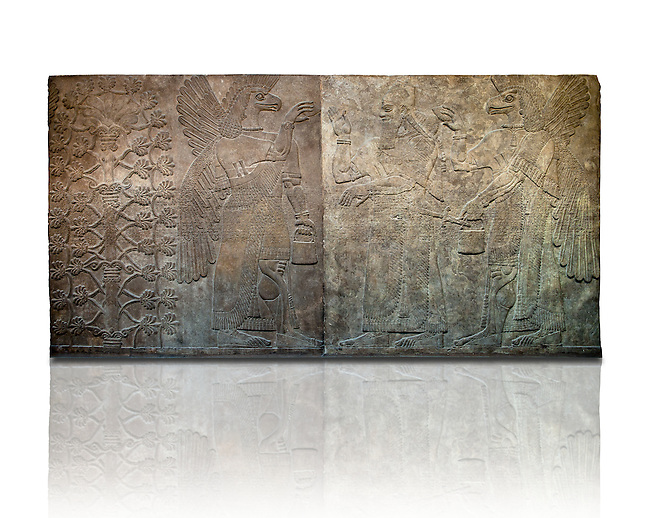 Assyrian relief sculpture panel  of King Ashurnasirpal flanked by  eagle headed protective spirits,  from Nimrud, Iraq.  865-860 B.C North West Palace, Room F, panel 3-4.  British Museum Assyrian  Archaeological exhibit  ref WA 124584-5