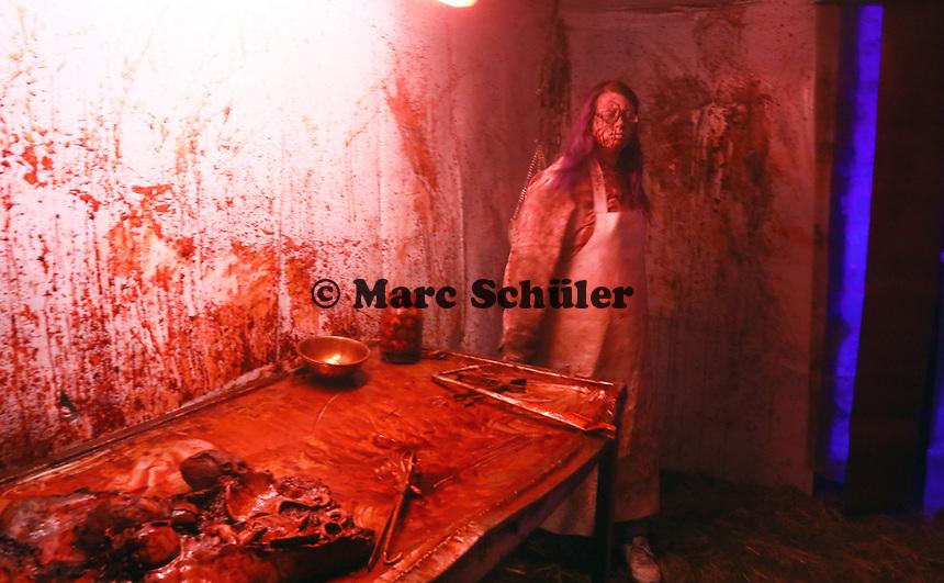 Metzgerei im Horror-Tunnel - Mühltal 03.11.2018: Halloween auf der Burg Frankenstein