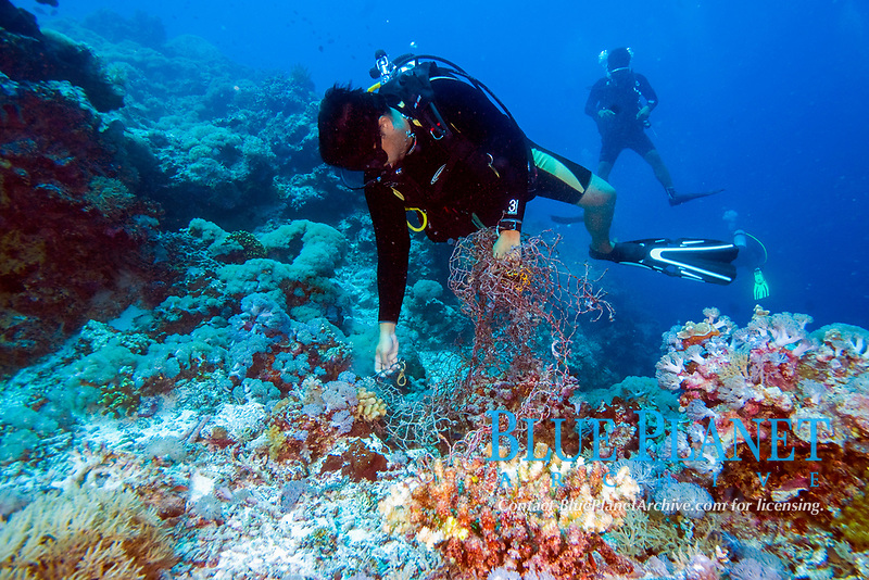 Diver collecting marine debris or garbage, old net, which had been caught up in the reef, Tubbataha, Philippines, Pacific Ocean
