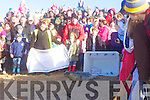 Tiny Tim  is released by volunteers of of the Irish Seal Sanctuary at Banna beach on Sunday.