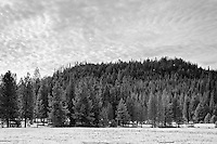 Winter scene in the northern Yosemite wilderness