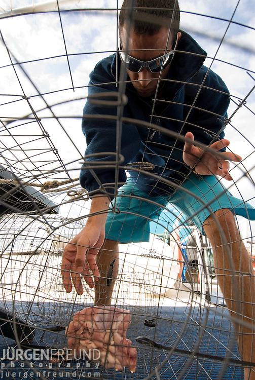 Preparing the nautilus cage with bait