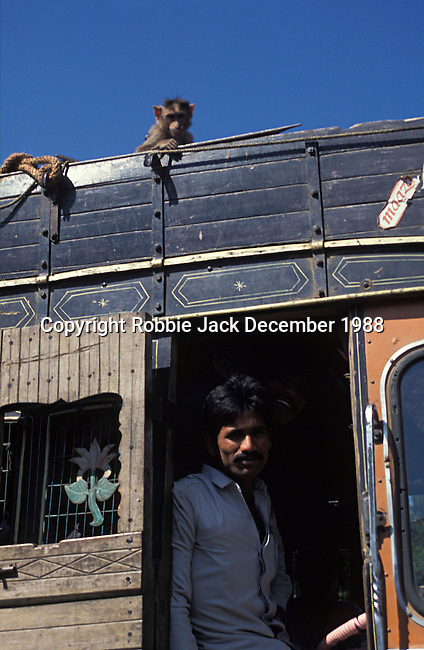 Truck driver with a monkey on his roof in Mahabaleshwar in Maharashtra in India.