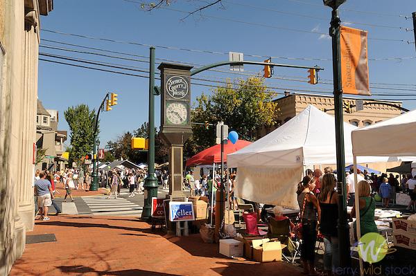 32nd Annual Selinsgrove Market Street Festival