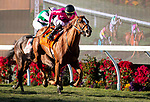 12-01-19 Del Mar Stakes